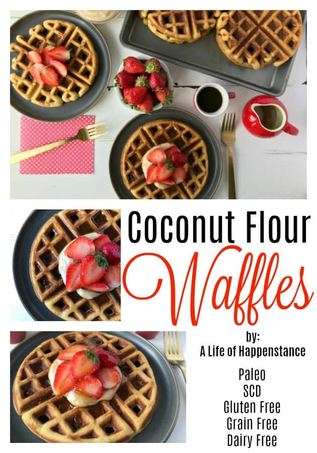 These dairy free waffles are light, sweet, and have just the slightest hint of vanilla. They're a great addition to your breakfast and can be easily made in advance and frozen for those busy weekday mornings. They are SCD and Paleo as well as gluten free and grain free.