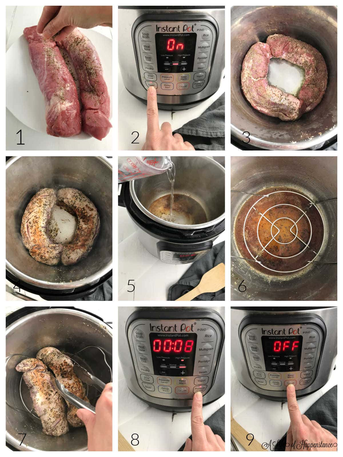 A nine photo collage showing how to make the berry pork tenderloin. Photo 1; sprinkling seasoning on the pork. Photo 2; pressing SAUTE button on Instant Pot. Photo 3; the tenderloins being seared. Photo 4; the other side of the tenderloins being seared. Photo 5; pouring water into the pot. Photo 6; the trivet in the pot. Photo 7; placing the pork tenderloins on the trivet. Photo 8; setting the Instant Pot to pressure cook for 8 minutes. Photo 9; pressing the CANCEL button the Instant Pot.